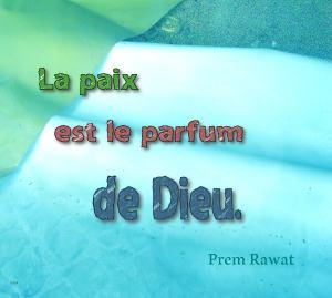Parfumb